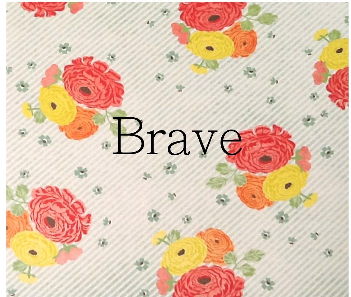 brave2 (2)